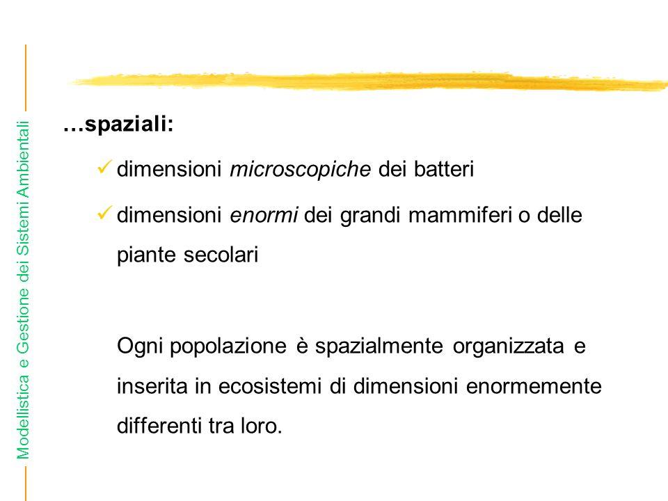 …spaziali: dimensioni microscopiche dei batteri. dimensioni enormi dei grandi mammiferi o delle piante secolari.