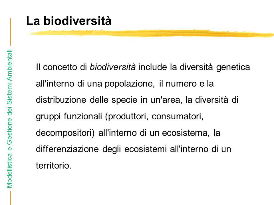 La biodiversità