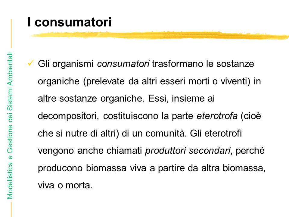 I consumatori