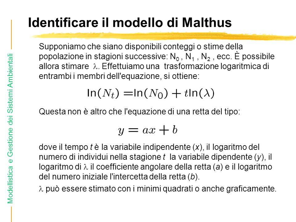 Identificare il modello di Malthus