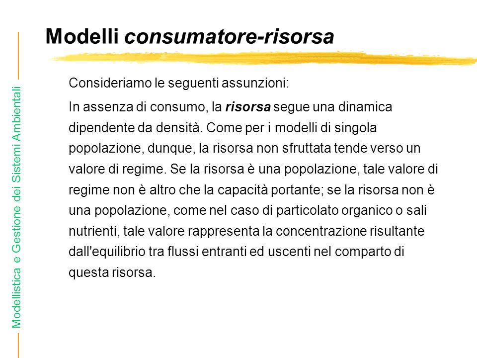 Modelli consumatore-risorsa