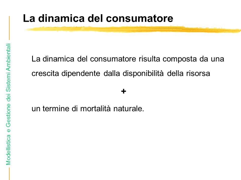 La dinamica del consumatore