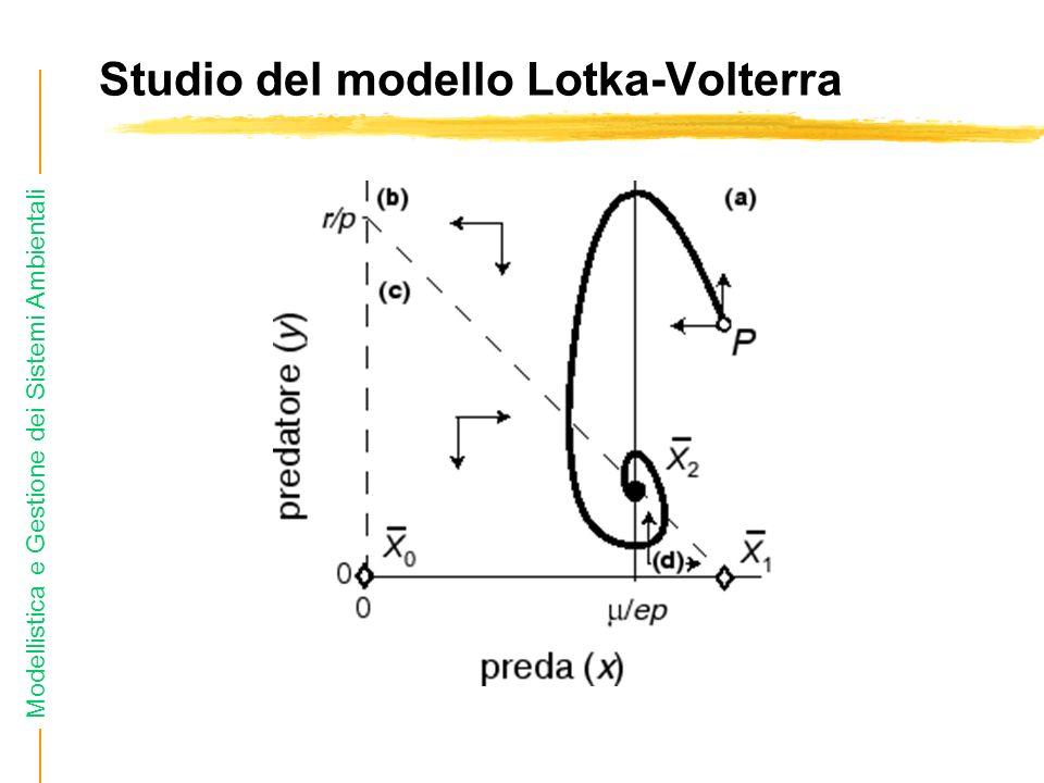 Studio del modello Lotka-Volterra