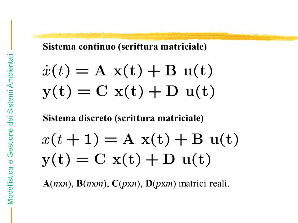 Sistema continuo (scrittura matriciale)