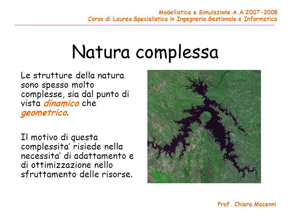 Natura complessa Le strutture della natura sono spesso molto complesse, sia dal punto di vista dinamico che geometrico.