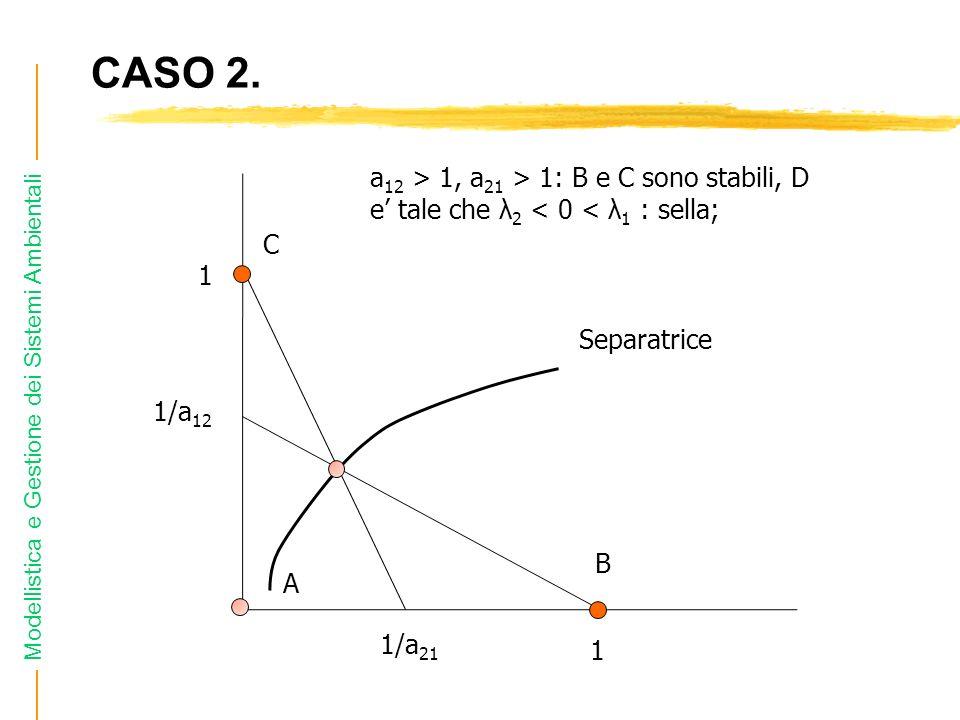 CASO 2. a12 > 1, a21 > 1: B e C sono stabili, D e' tale che λ2 < 0 < λ1 : sella; C. 1. Separatrice.