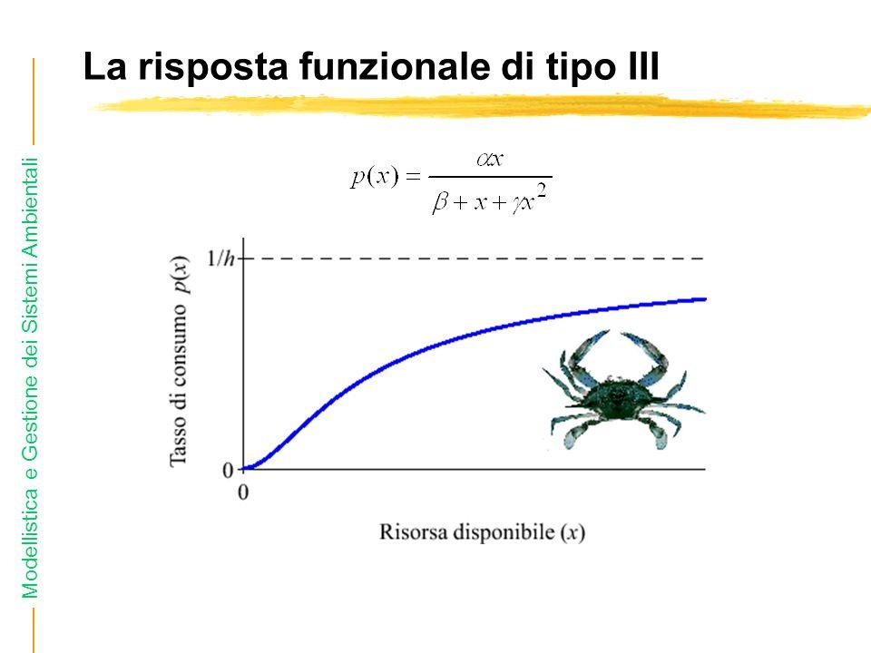 La risposta funzionale di tipo III