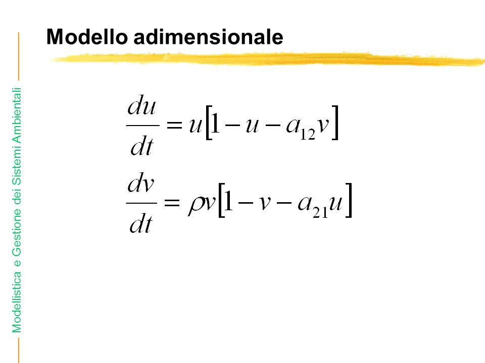 Modello adimensionale