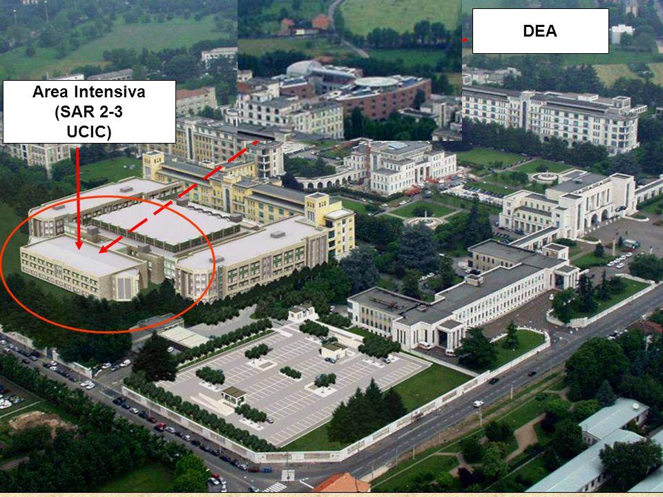 DEA Area Intensiva (SAR 2-3 UCIC)