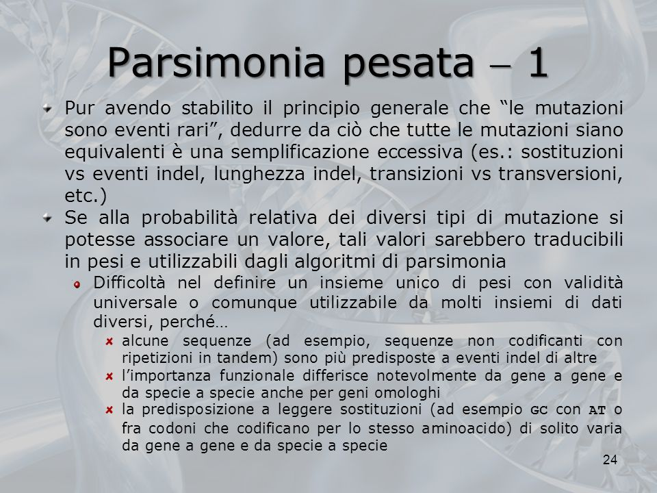 Parsimonia pesata  1