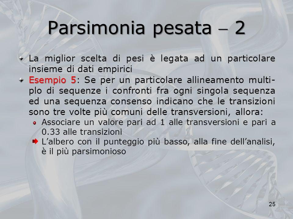Parsimonia pesata  2 La miglior scelta di pesi è legata ad un particolare insieme di dati empirici.