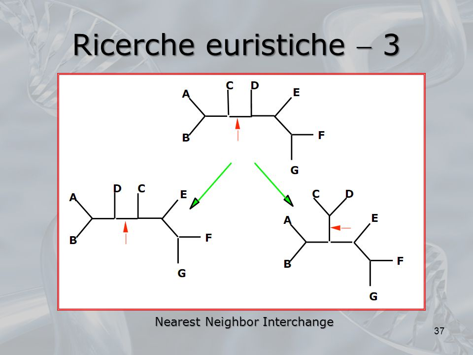 Ricerche euristiche  3 Nearest Neighbor Interchange