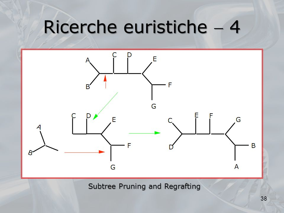 Ricerche euristiche  4 Subtree Pruning and Regrafting