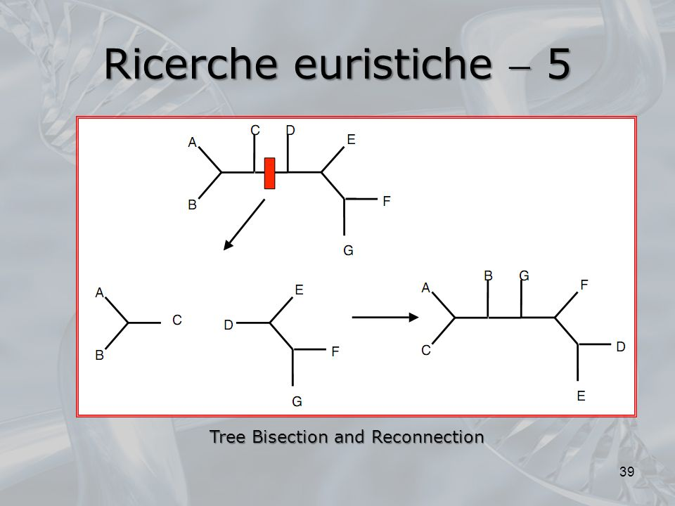 Ricerche euristiche  5 Tree Bisection and Reconnection