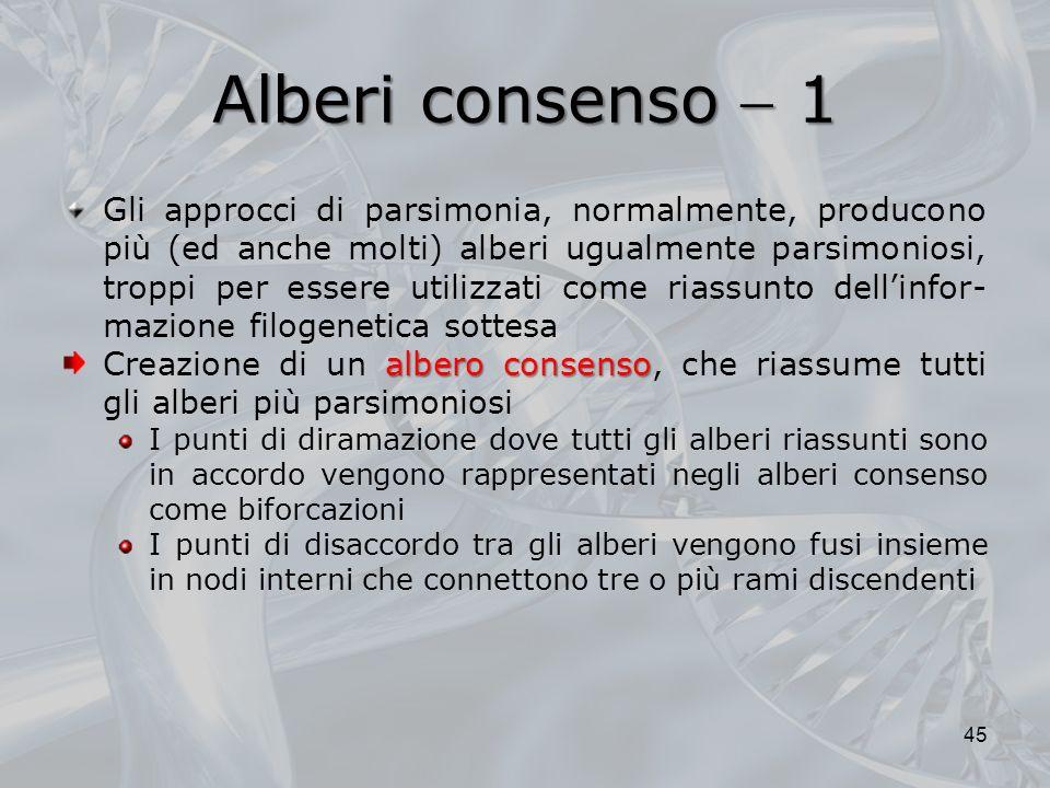 Alberi consenso  1