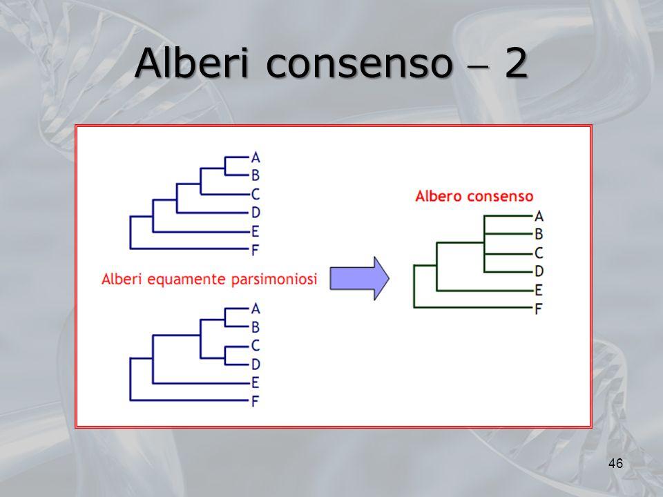 Alberi consenso  2