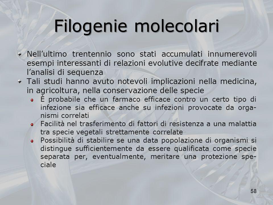 Filogenie molecolari