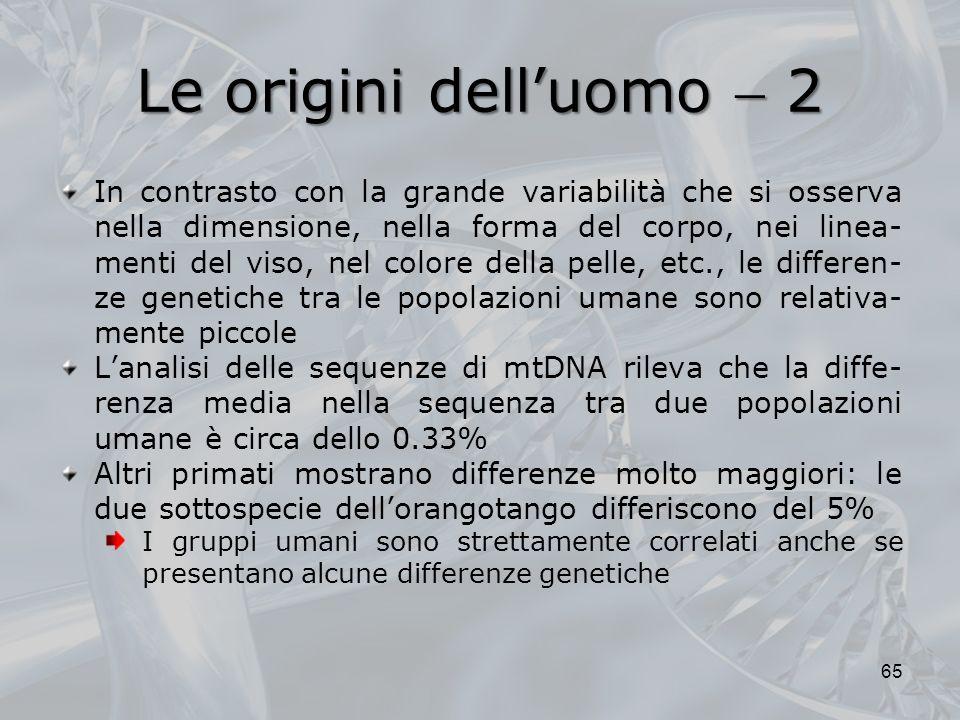 Le origini dell'uomo  2