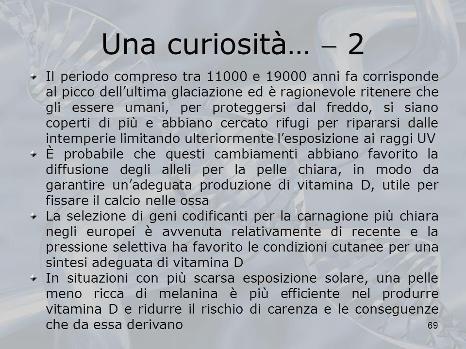 Una curiosità…  2