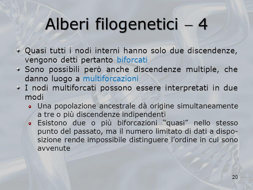Alberi filogenetici  4 Quasi tutti i nodi interni hanno solo due discendenze, vengono detti pertanto biforcati.