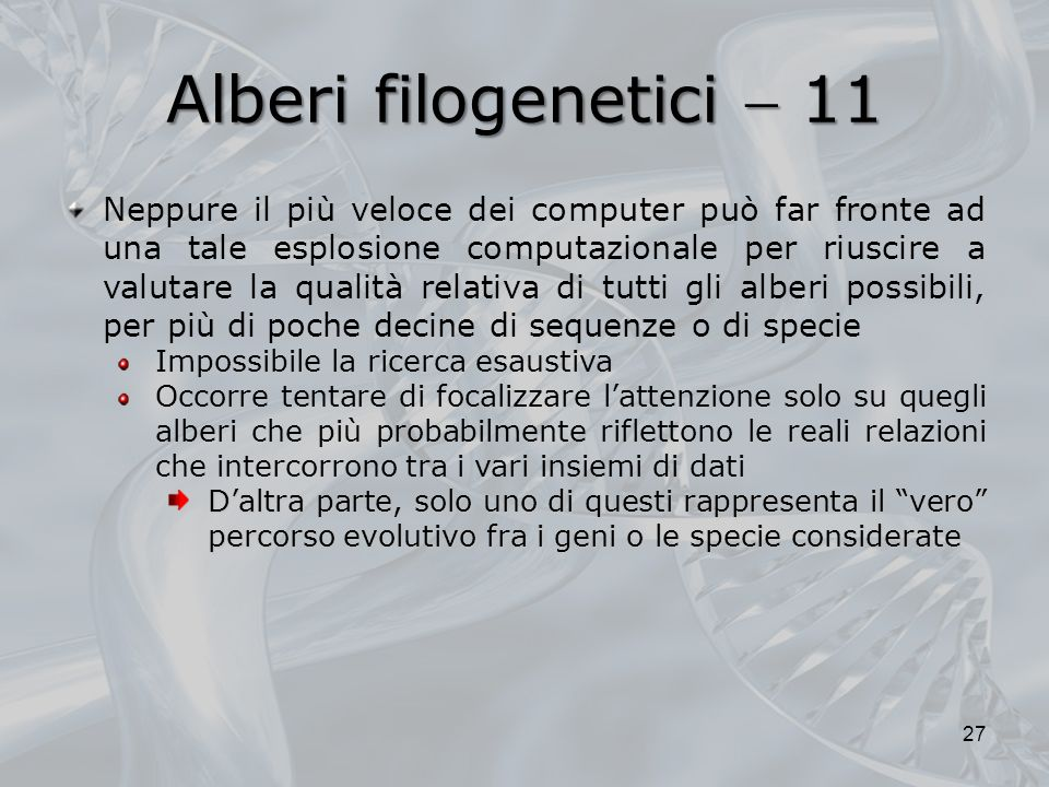 Alberi filogenetici  11