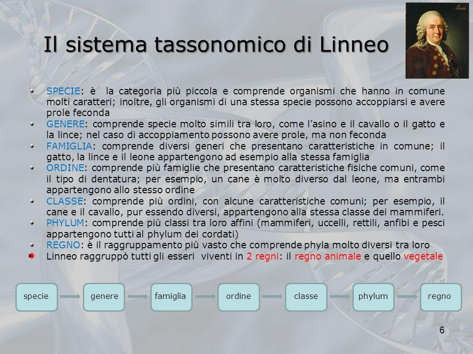 Il sistema tassonomico di Linneo