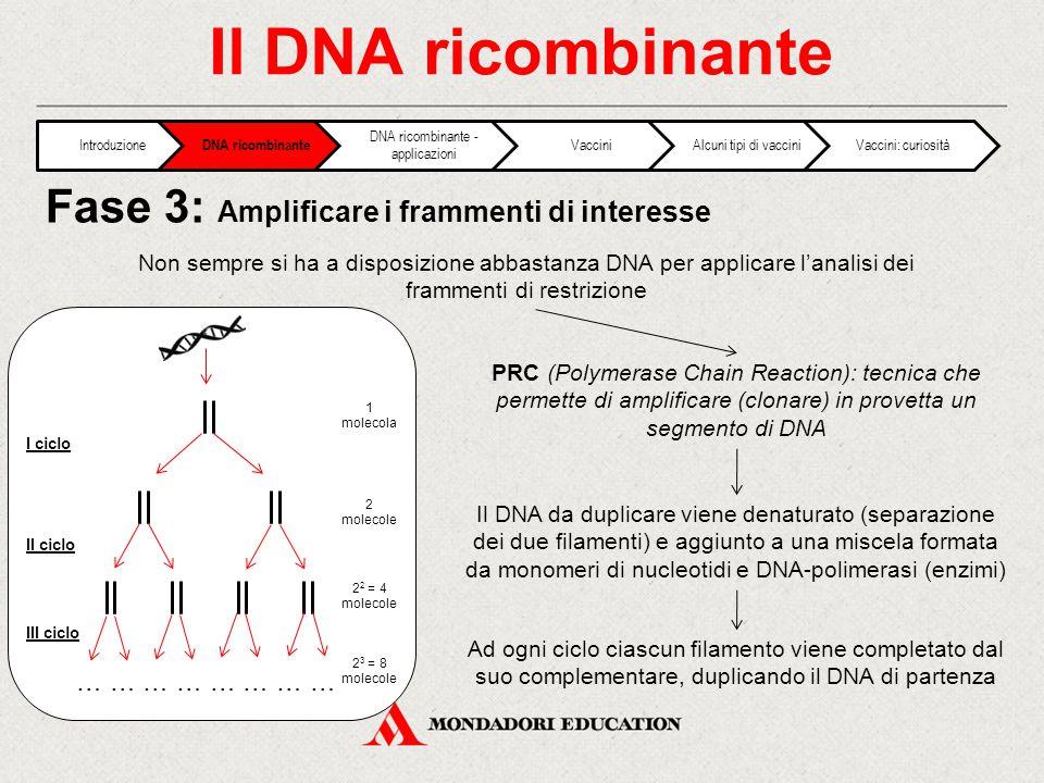 DNA ricombinante - applicazioni