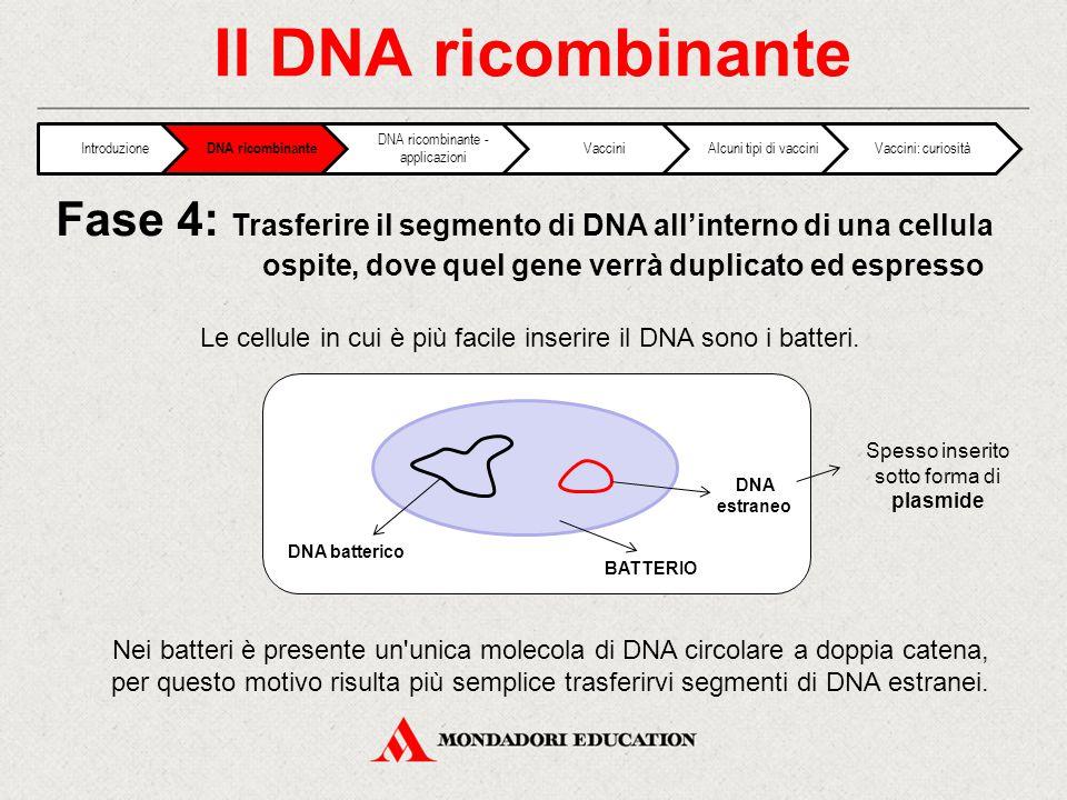 Il DNA ricombinante Introduzione. DNA ricombinante. DNA ricombinante - applicazioni. Vaccini. Alcuni tipi di vaccini.