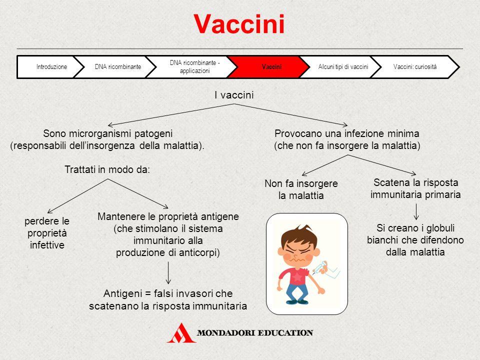 Vaccini Introduzione. DNA ricombinante. DNA ricombinante - applicazioni. Vaccini. Alcuni tipi di vaccini.