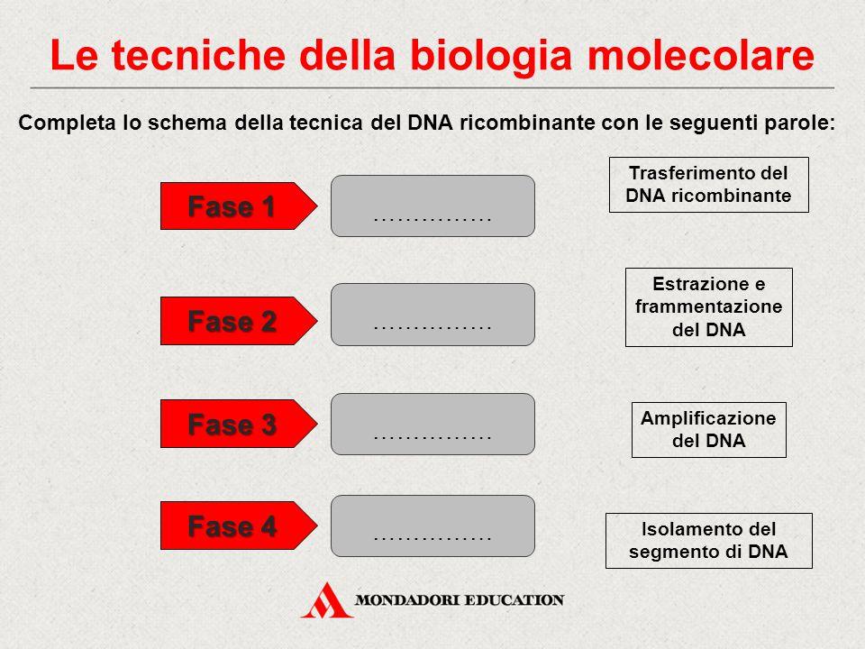 Le tecniche della biologia molecolare