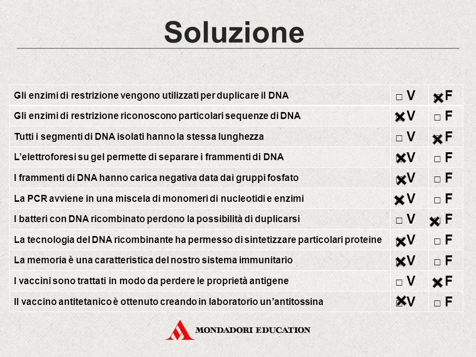 Soluzione Gli enzimi di restrizione vengono utilizzati per duplicare il DNA. □ V. □ F.