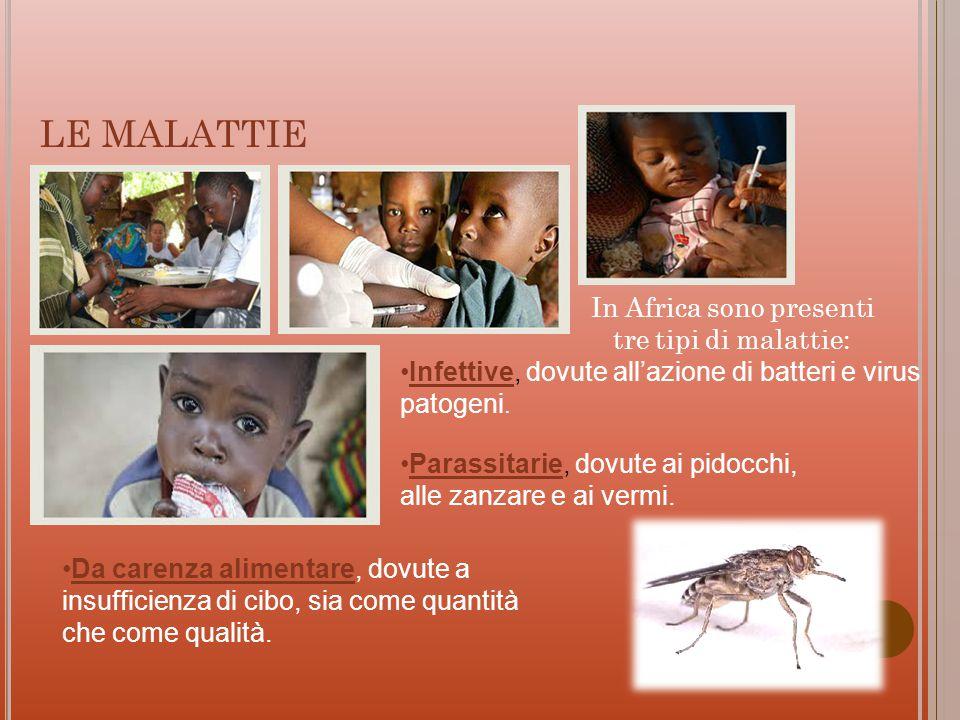LE MALATTIE In Africa sono presenti tre tipi di malattie: