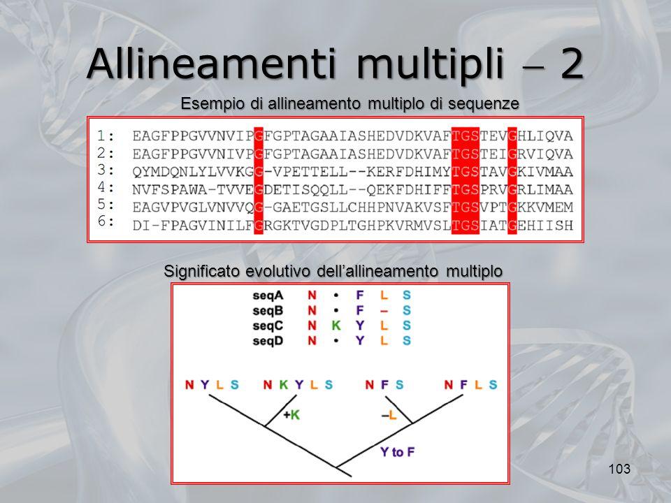 Allineamenti multipli  2