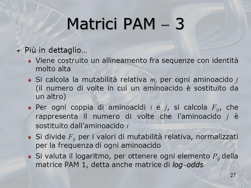 Matrici PAM  3 Più in dettaglio…