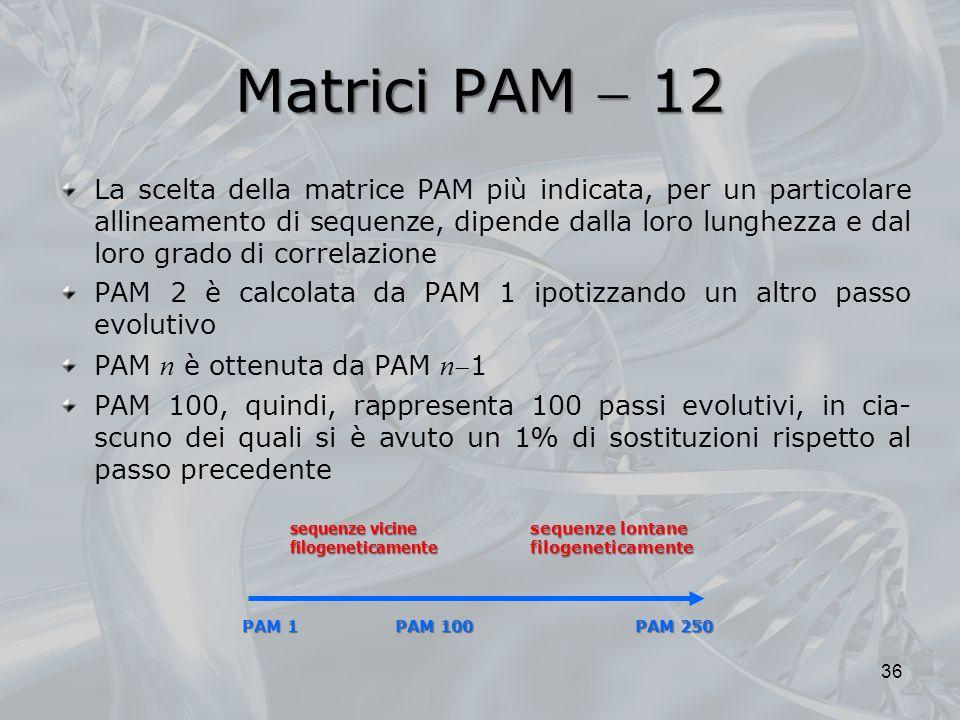 Matrici PAM  12