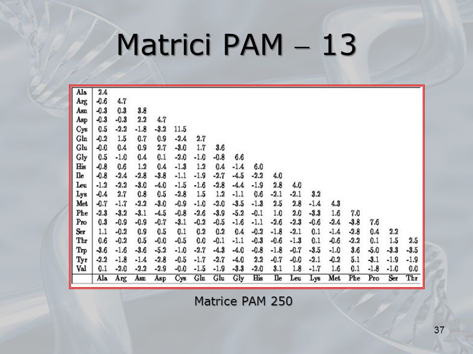 Matrici PAM  13 Matrice PAM 250