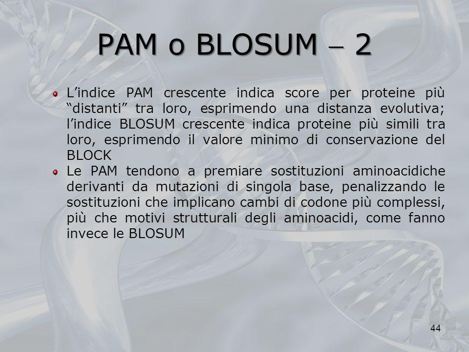 PAM o BLOSUM  2