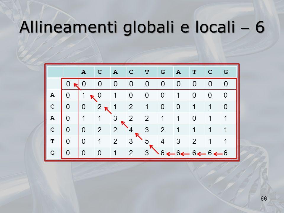 Allineamenti globali e locali  6