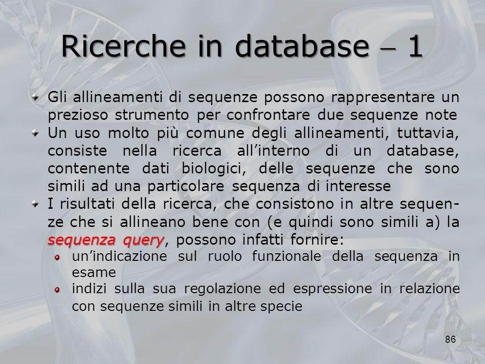 Ricerche in database  1 Gli allineamenti di sequenze possono rappresentare un prezioso strumento per confrontare due sequenze note.
