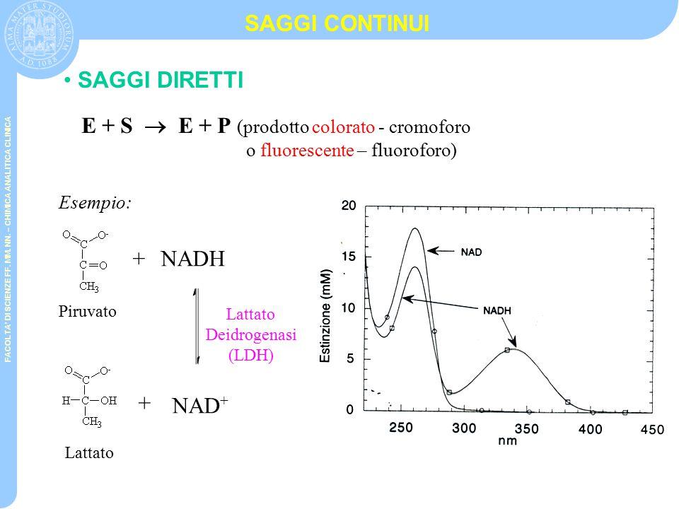 E + S  E + P (prodotto colorato - cromoforo