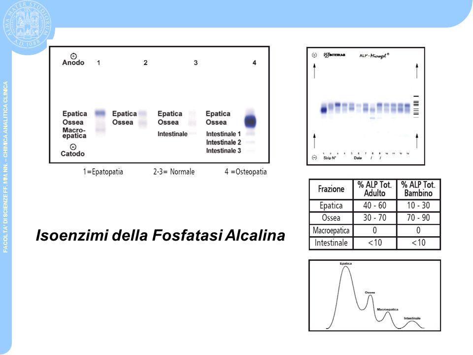 Isoenzimi della Fosfatasi Alcalina