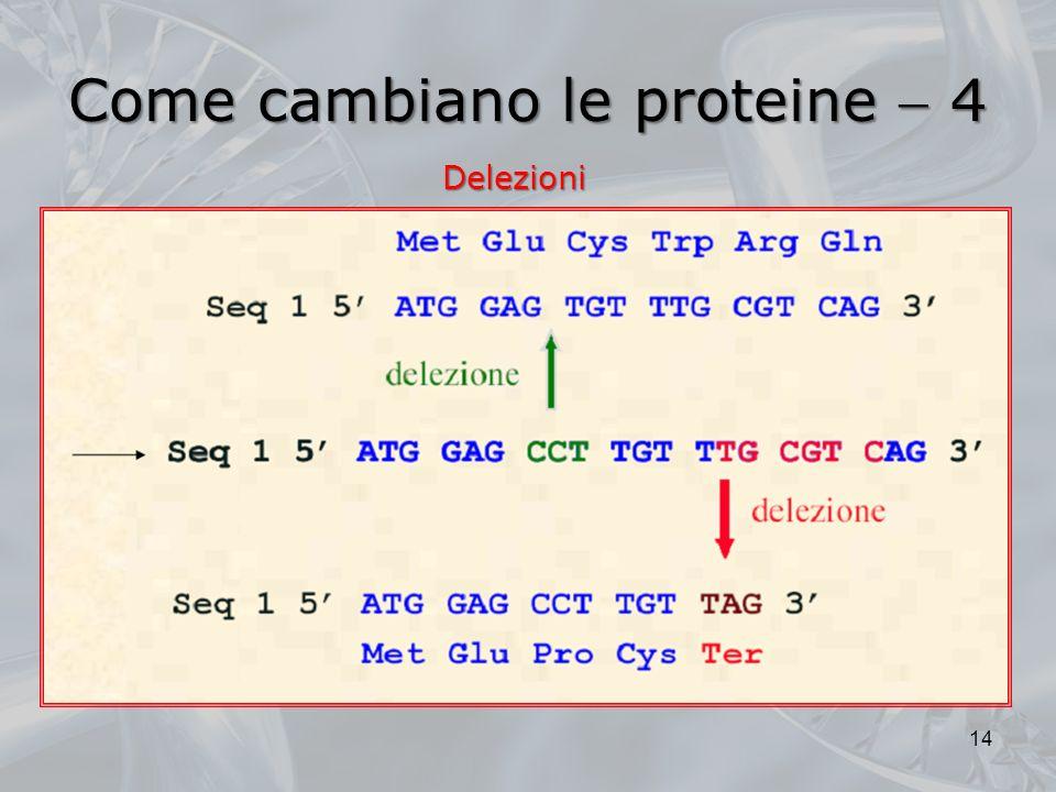 Come cambiano le proteine  4