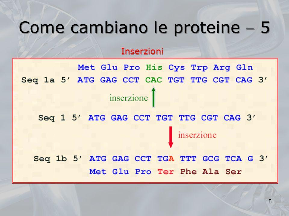 Come cambiano le proteine  5