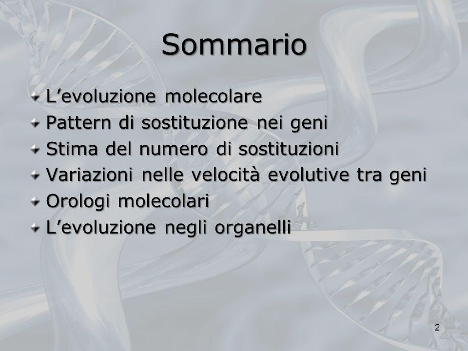 Sommario L'evoluzione molecolare Pattern di sostituzione nei geni