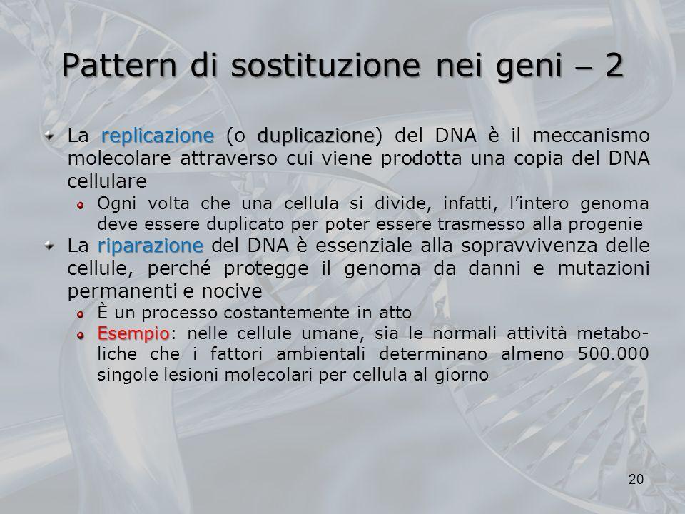 Pattern di sostituzione nei geni  2