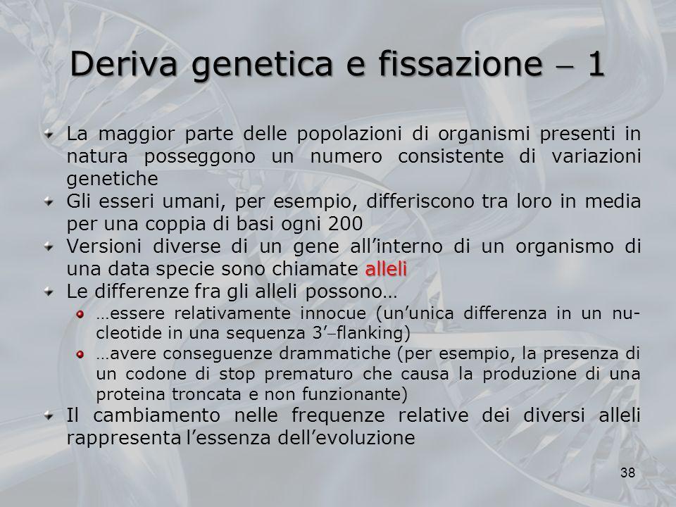Deriva genetica e fissazione  1