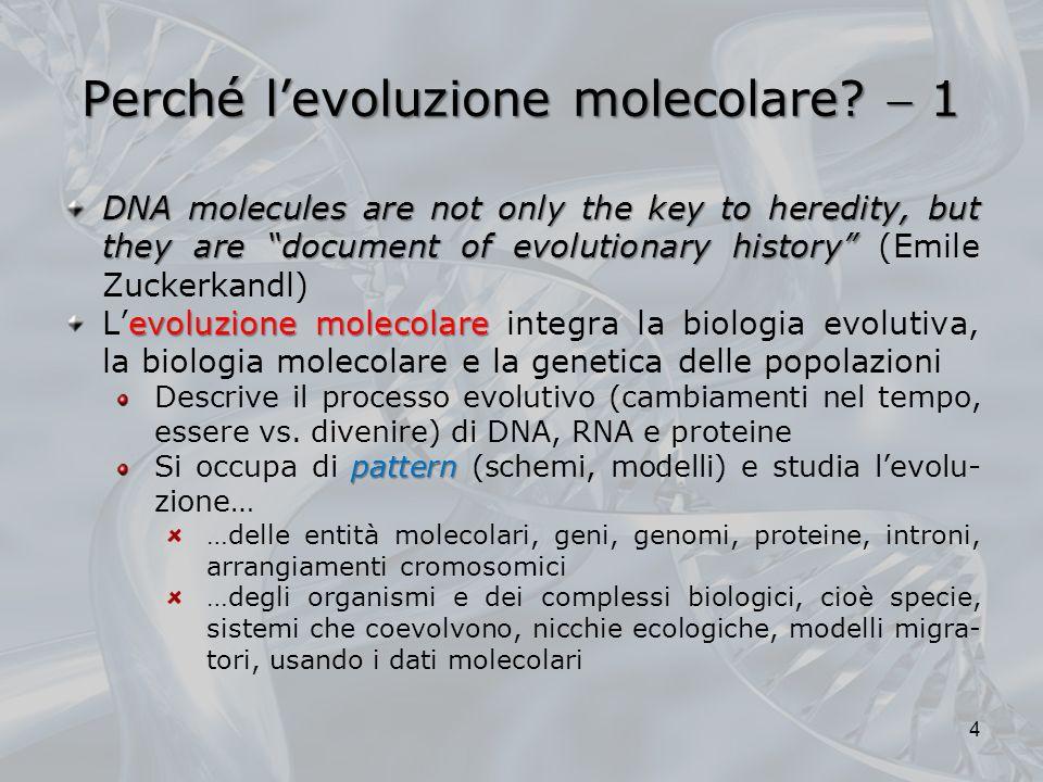 Perché l'evoluzione molecolare  1