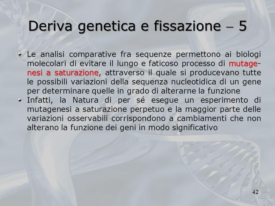 Deriva genetica e fissazione  5