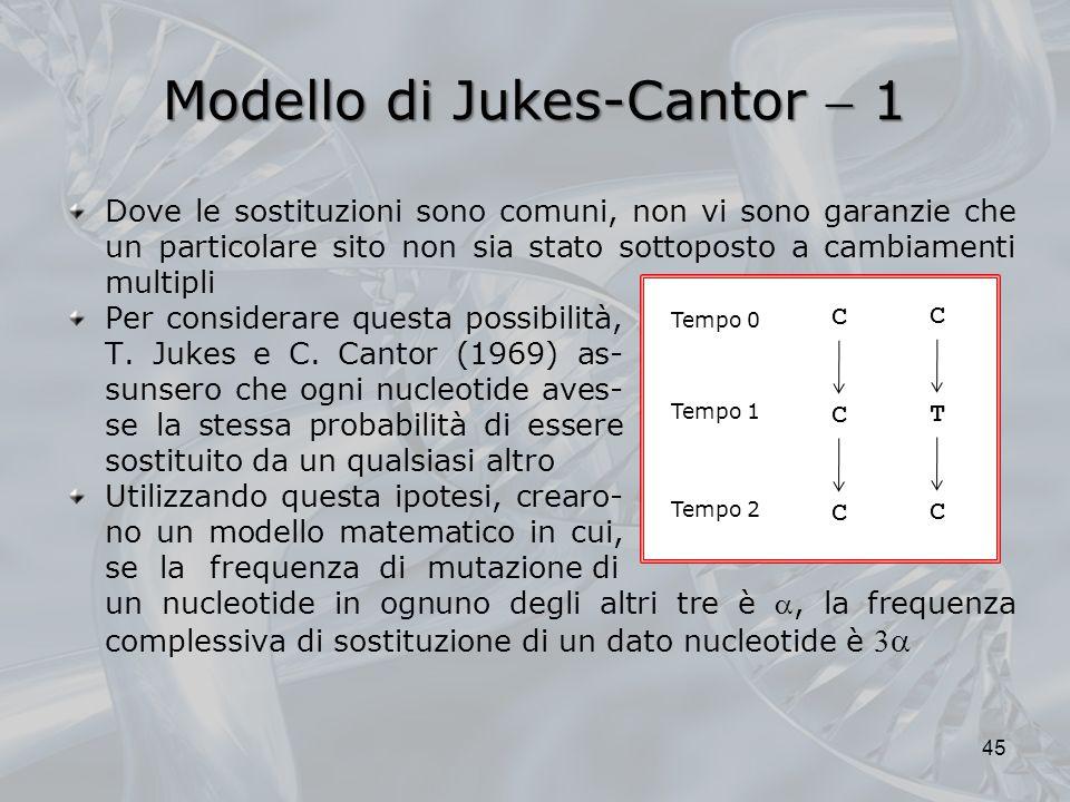 Modello di Jukes-Cantor  1
