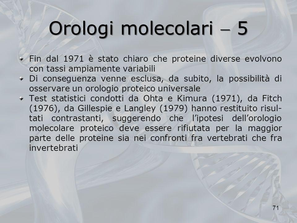 Orologi molecolari  5 Fin dal 1971 è stato chiaro che proteine diverse evolvono con tassi ampiamente variabili.